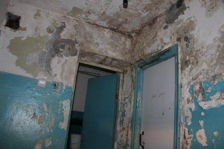 В Доме на Доватора 58 произвели косметический ремонт